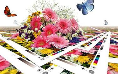 print-main